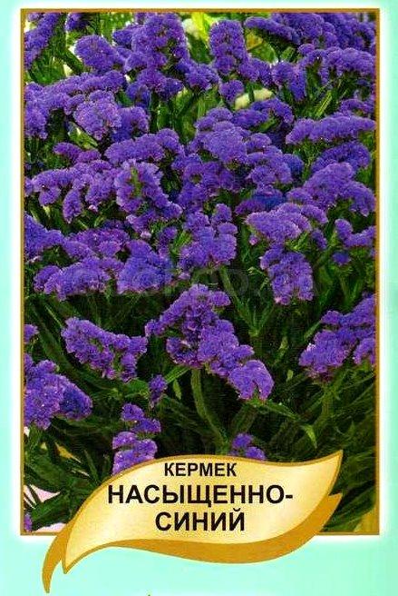 Томат Сибирский изобильный, семена