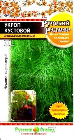 Укроп Русский Размер