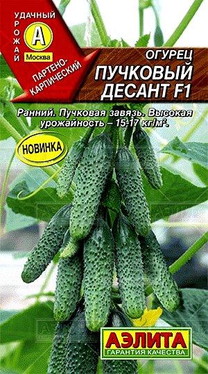 Огурец ПУЧКОВЫЙ ДЕСАНТ F1